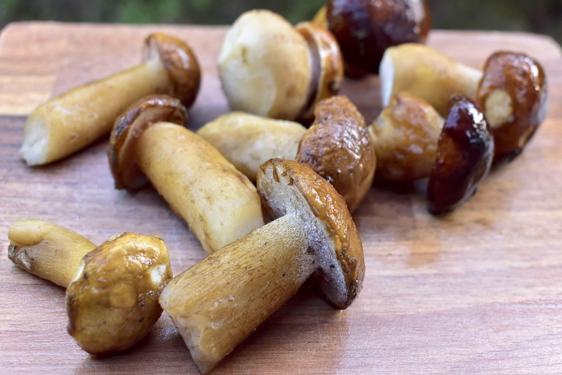 """Congelare i funghi soluzione pratica e sicura, oltre che """"buona"""""""