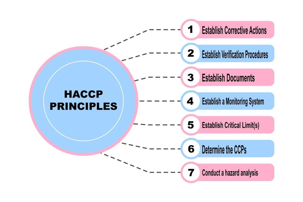 Quanti sono i principi del sistema HACCP