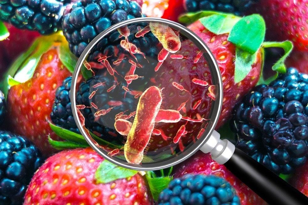 Quali fattori influenzano la crescita microbica negli alimenti secondo l'HACCP